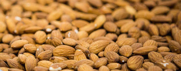Almond ingredient